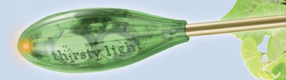 thirsty_light.jpg