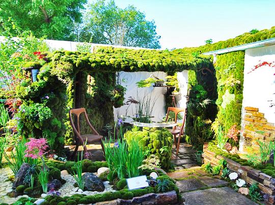 Un jard n japon s en la azotea digno de cualquier terraza - Disenador de jardines ...