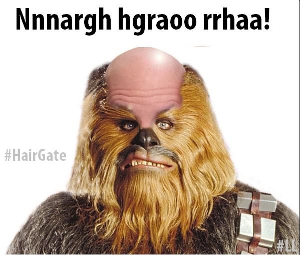 hairgate-meme