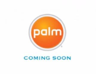 palm_nuevo