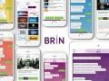 BRiN-App-asesor-negocio