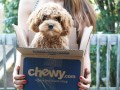 chewy-com