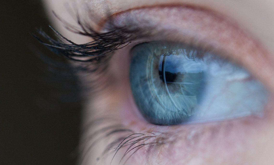 La autentificación biométrica se abre paso en el futuro de la seguridad digital - ITespresso.es